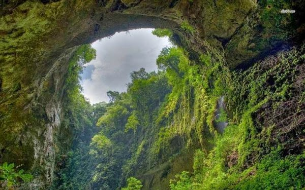 Man Noticed This Hole In A Rock. But What;s Inside Has Astounded The Whole World (1)