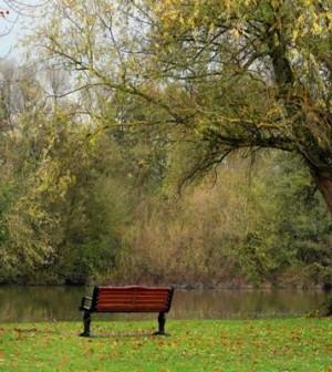 Park-Bench-Meditation-Melanie-Gow-www.myofficetoday.co_.uk_-900x506