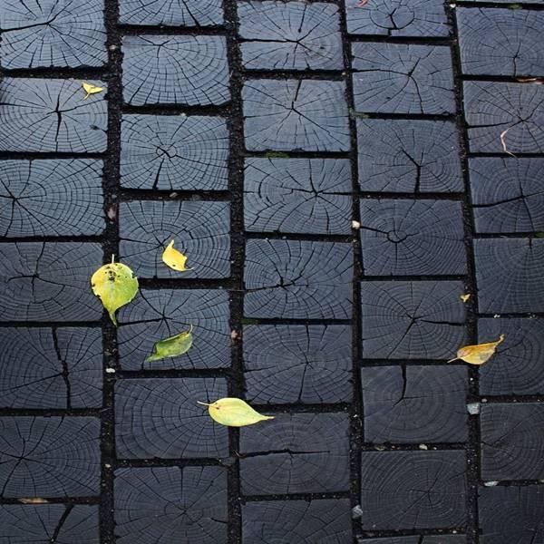 idei-pentru-pavat-curtea-yard-paving-design-ideas-19