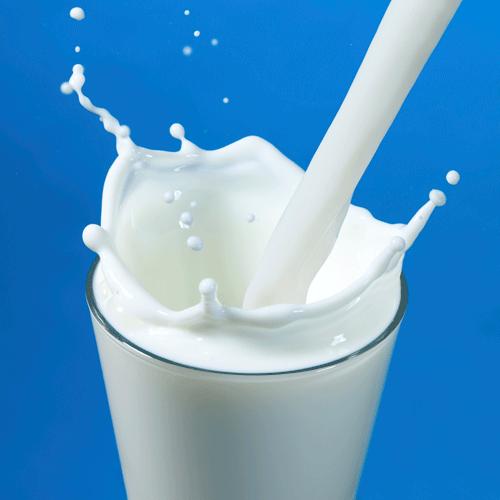 Így lopja el a tej a kalciumot a csontokból!