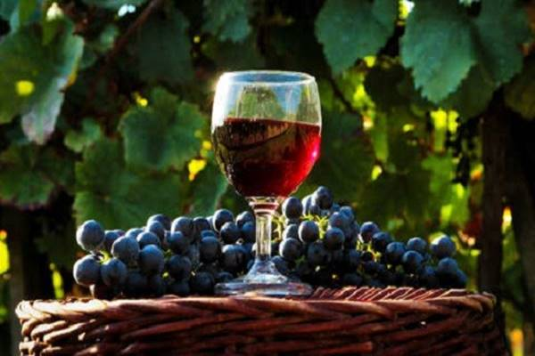 Egy 700 éves recept segítségével készíthetünk szíverősítő bort