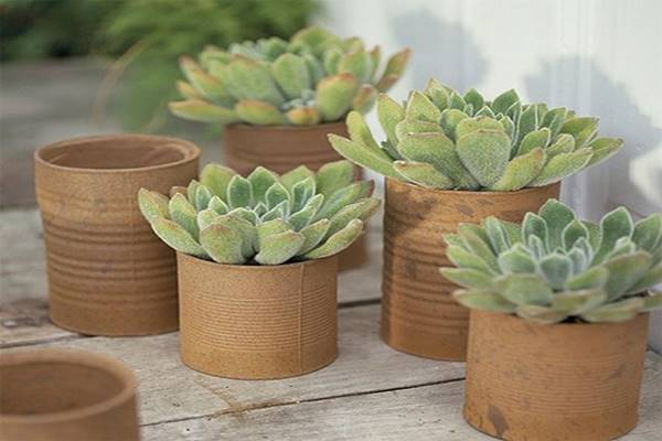 recycled-crafts-repurposed-tin-cans-recycling-idea-recycle-tin-cans-Favim.com-2511861