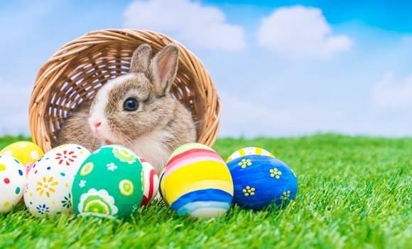 húsvéti sms idézetek A legszebb húsvéti sms ek, amit bárkinek elküldhetsz!